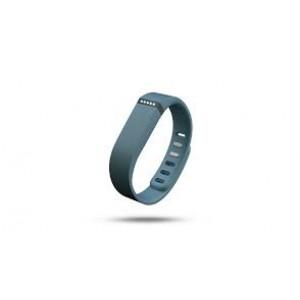 Купить браслет Fitbit Flex Slate